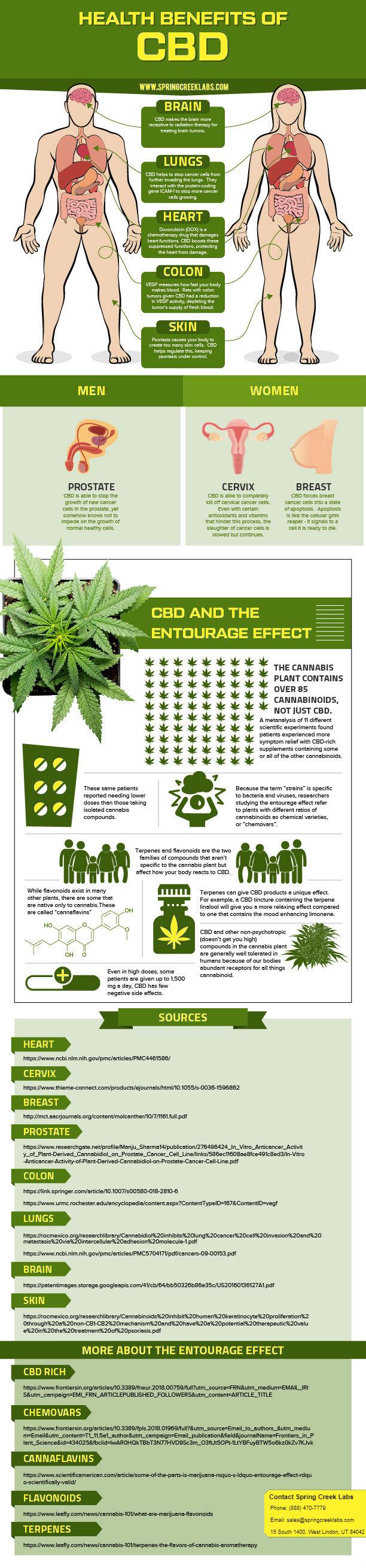 Health Benefits of CBD Infographic