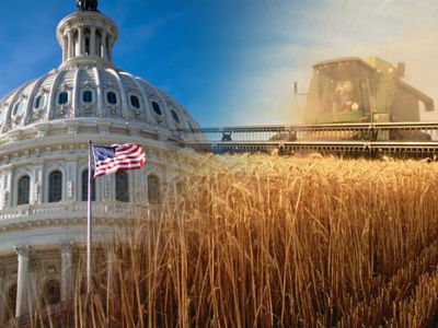 2018 Farm Bill Hemp Manufacturing