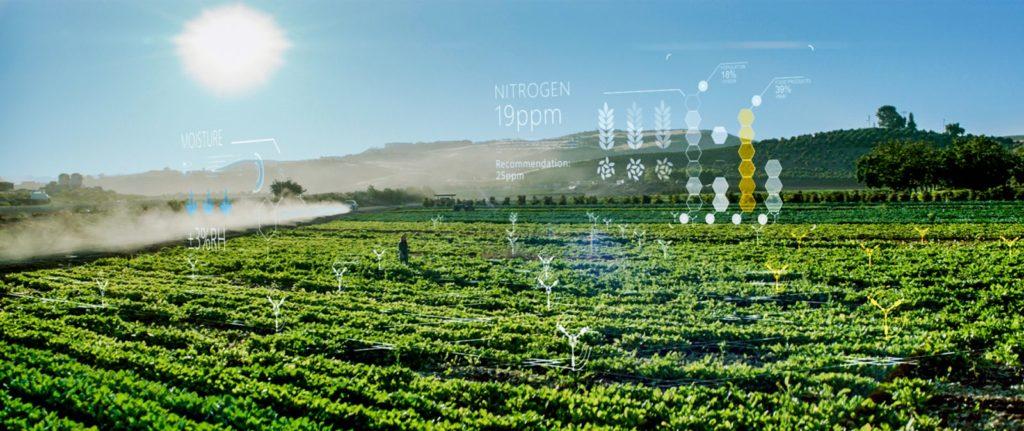 Hemp Farming Technology Artificial Intelligence