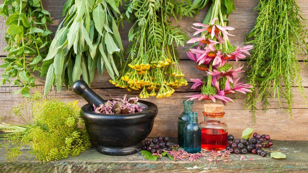 Hemp Healing Herbs